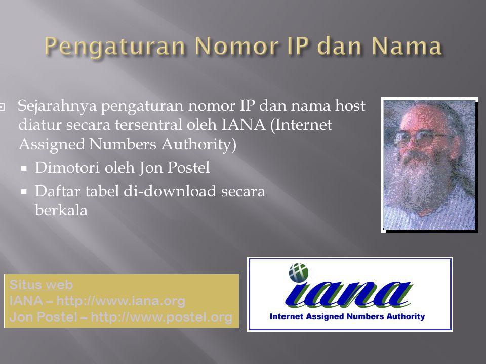 Sejarahnya pengaturan nomor IP dan nama host diatur secara tersentral oleh IANA (Internet Assigned Numbers Authority)  Dimotori oleh Jon Postel  D