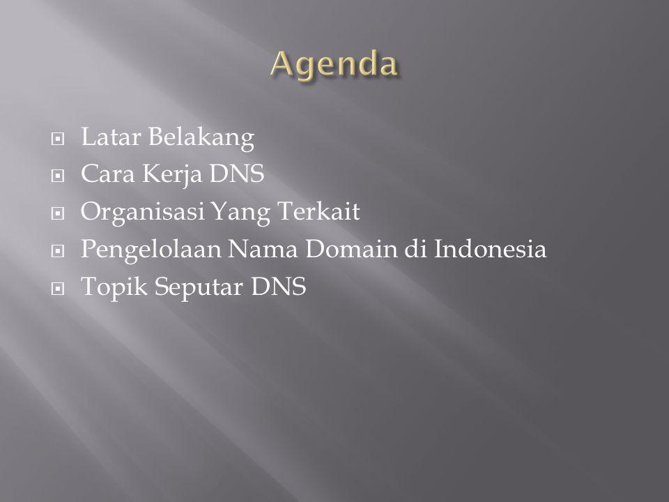  Latar Belakang  Cara Kerja DNS  Organisasi Yang Terkait  Pengelolaan Nama Domain di Indonesia  Topik Seputar DNS