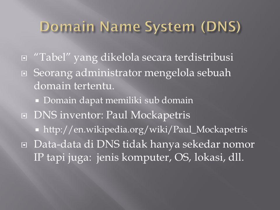 """ """"Tabel"""" yang dikelola secara terdistribusi  Seorang administrator mengelola sebuah domain tertentu.  Domain dapat memiliki sub domain  DNS invent"""