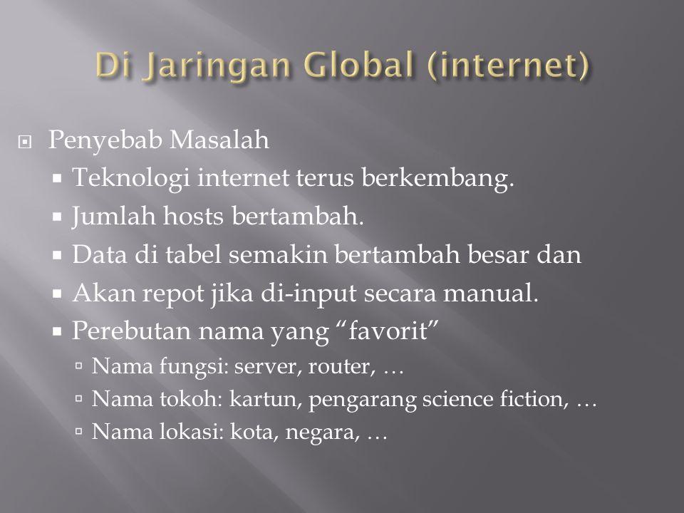  Penyebab Masalah  Teknologi internet terus berkembang.  Jumlah hosts bertambah.  Data di tabel semakin bertambah besar dan  Akan repot jika di-i
