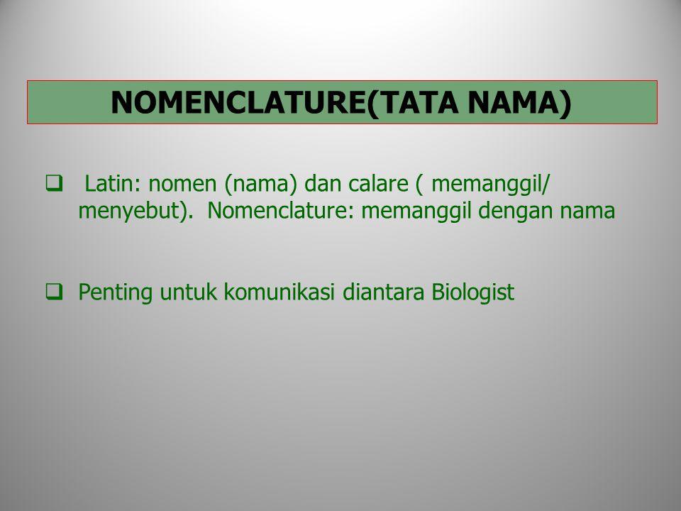 NOMENCLATURE(TATA NAMA)  Latin: nomen (nama) dan calare ( memanggil/ menyebut).