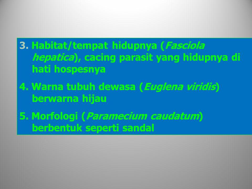 3.Habitat/tempat hidupnya (Fasciola hepatica), cacing parasit yang hidupnya di hati hospesnya 4.