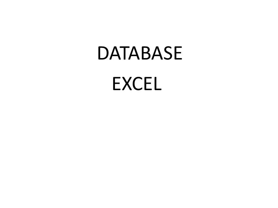 DATABASE EXCEL