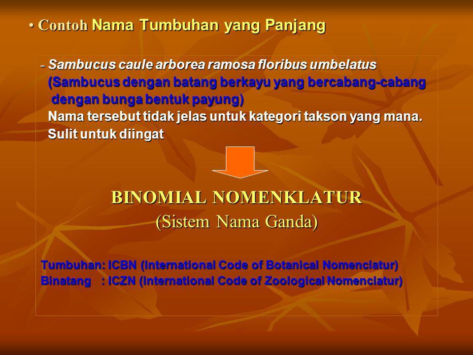 Nama ilmiah (Scientific name) Nama latin/nama dalam bahasa latin Nama biasa (Common name) Nama lokal (Vernacular name) NAMA ILMIAH 1. Diatur dalam kod