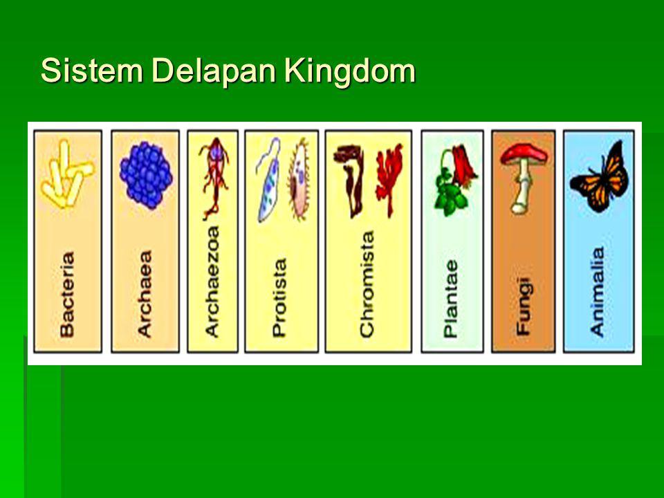 Sistem Lima Kingdom