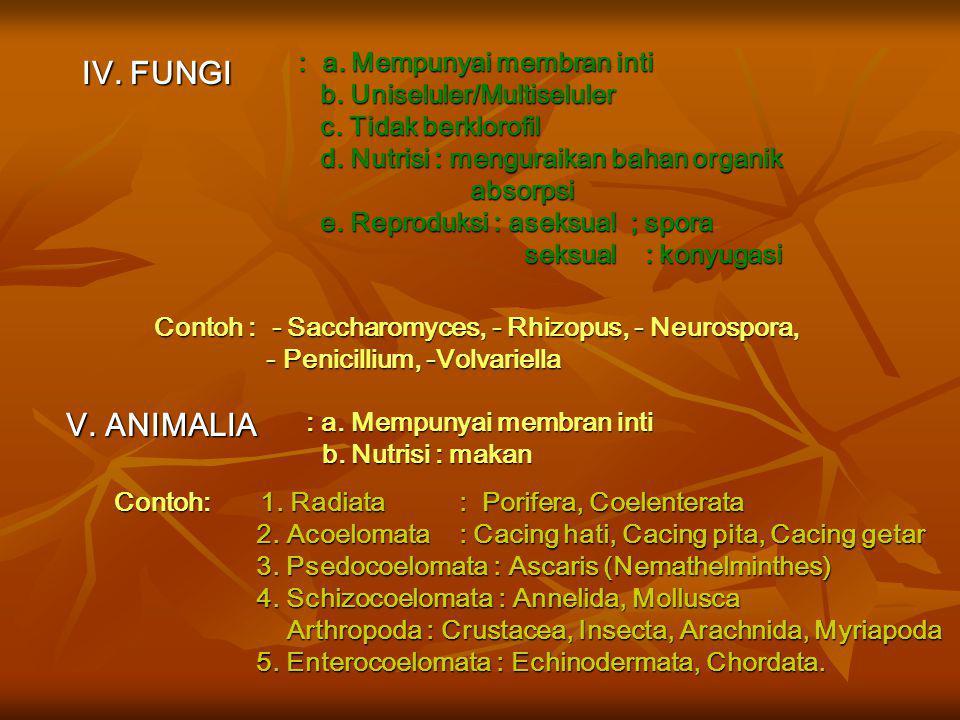 Keanekaragaman Tumbuhan & Hewan Sistem Lima Kingdom I. MONERA : a. Bersel satu / koloni (Prokariotik) b. Tak mempunyai membran inti (Prokariotik) b. T