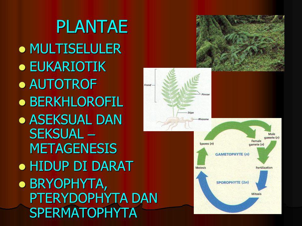 JAMUR (FUNGI) Uniseluler atau multiseluler eukariotik Uniseluler atau multiseluler eukariotik Tubuh berbentuk benang (hifa) Tubuh berbentuk benang (hi