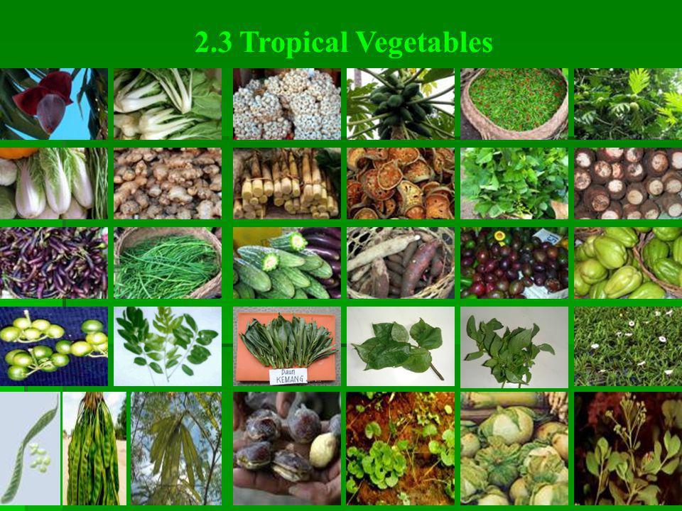  128 ribu jenis tumbuhan  350 ribu jenis hewan  10 ribu jenis mikroba Luas daratan Indonesia hanya 1,3% seluruh luas daratan dunia memiliki:  10%