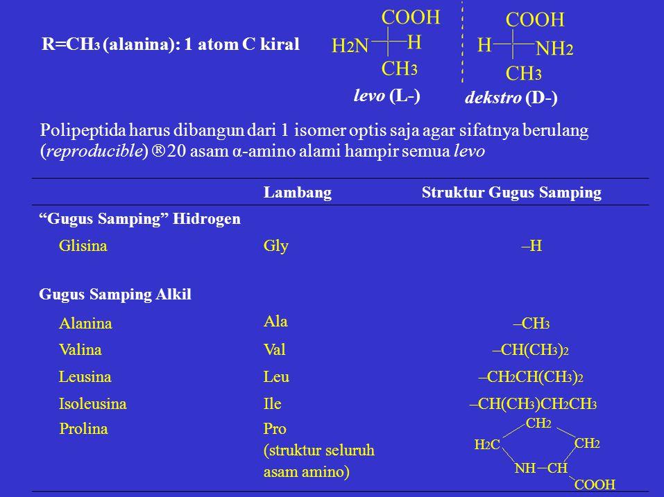 H2NH2N COOH H CH 3 COOH NH 2 CH 3 H levo (L-) dekstro (D-) R=CH 3 (alanina): 1 atom C kiral Polipeptida harus dibangun dari 1 isomer optis saja agar s