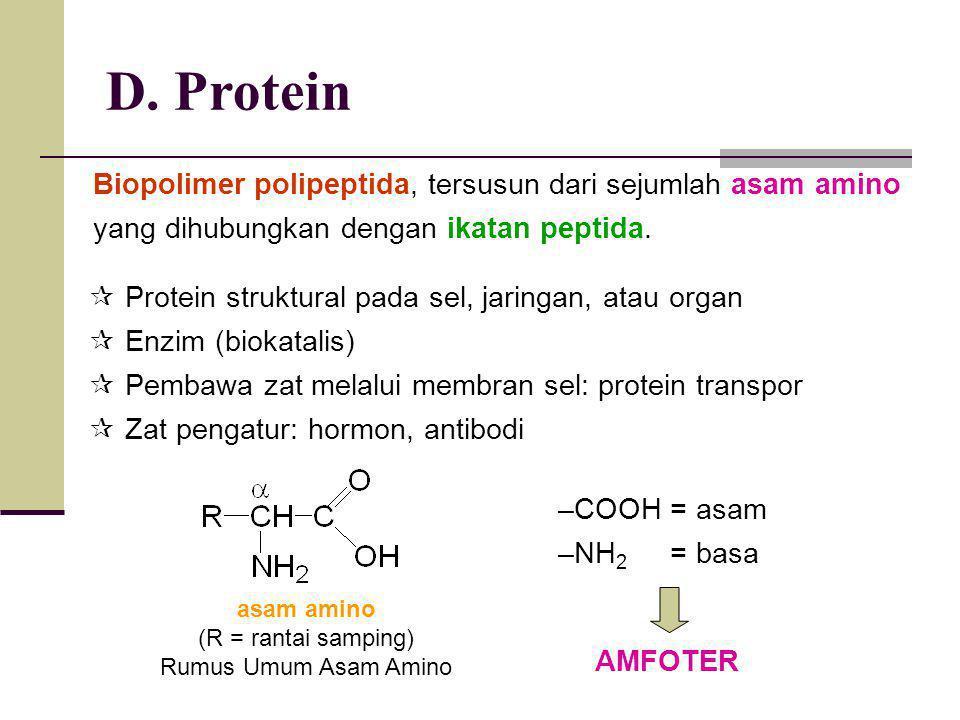 D. Protein Biopolimer polipeptida, tersusun dari sejumlah asam amino yang dihubungkan dengan ikatan peptida.  Protein struktural pada sel, jaringan,