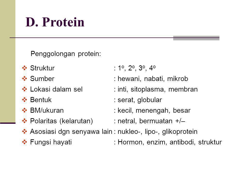 D. Protein Penggolongan protein:  Struktur: 1 o, 2 o, 3 o, 4 o  Sumber: hewani, nabati, mikrob  Lokasi dalam sel: inti, sitoplasma, membran  Bentu