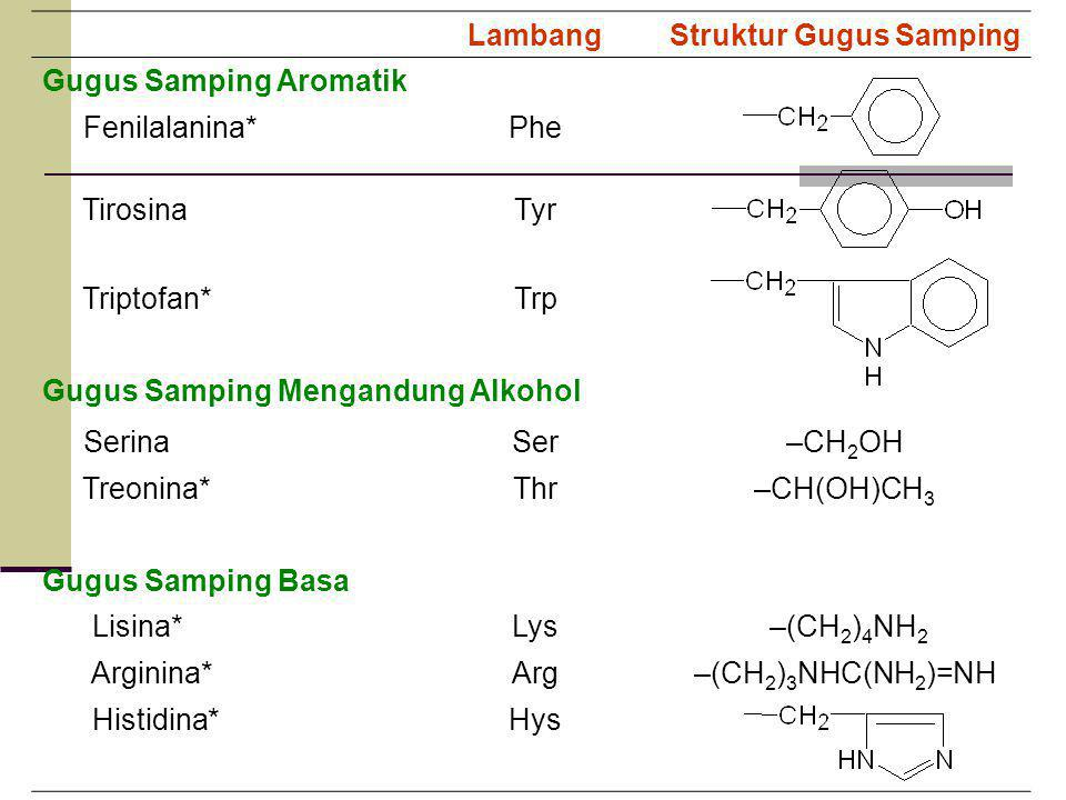 LambangStruktur Gugus Samping Gugus Samping Aromatik Fenilalanina*Phe TirosinaTyr Triptofan*Trp Gugus Samping Mengandung Alkohol SerinaSer–CH 2 OH Treonina*Thr–CH(OH)CH 3 Gugus Samping Basa Lisina*Lys –(CH 2 ) 4 NH 2 Arginina*Arg–(CH 2 ) 3 NHC(NH 2 )=NH Histidina*Hys