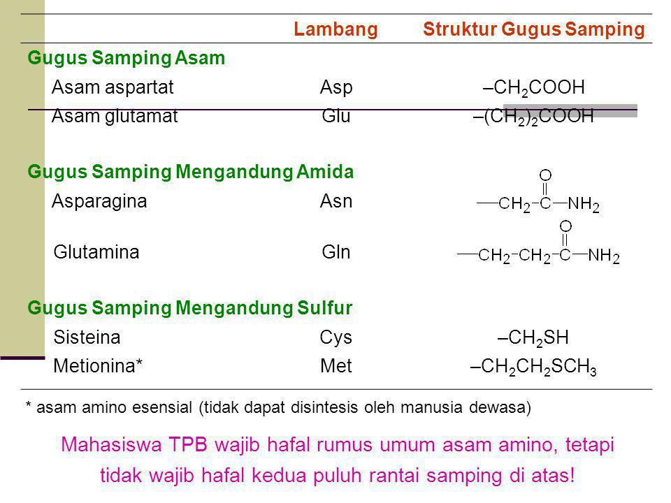 LambangStruktur Gugus Samping Gugus Samping Asam Asam aspartatAsp–CH 2 COOH Asam glutamatGlu–(CH 2 ) 2 COOH Gugus Samping Mengandung Amida AsparaginaAsn GlutaminaGln Gugus Samping Mengandung Sulfur SisteinaCys–CH 2 SH Metionina*Met–CH 2 CH 2 SCH 3 * asam amino esensial (tidak dapat disintesis oleh manusia dewasa) Mahasiswa TPB wajib hafal rumus umum asam amino, tetapi tidak wajib hafal kedua puluh rantai samping di atas!