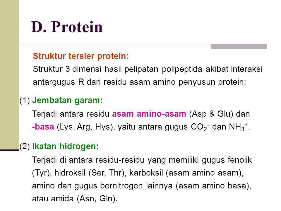 D. Protein Struktur tersier protein: Struktur 3 dimensi hasil pelipatan polipeptida akibat interaksi antargugus R dari residu asam amino penyusun prot