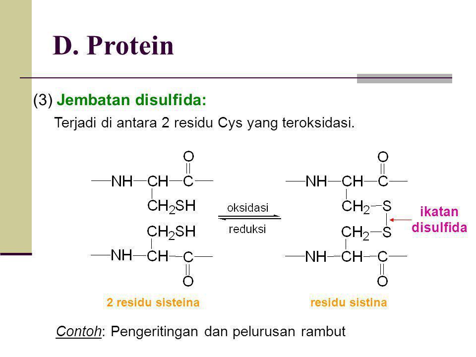 D. Protein (3) Jembatan disulfida: Terjadi di antara 2 residu Cys yang teroksidasi. ikatan disulfida 2 residu sisteina residu sistina Contoh: Pengerit