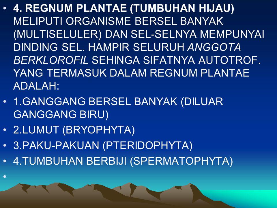 4. REGNUM PLANTAE (TUMBUHAN HIJAU) MELIPUTI ORGANISME BERSEL BANYAK (MULTISELULER) DAN SEL-SELNYA MEMPUNYAI DINDING SEL. HAMPIR SELURUH ANGGOTA BERKLO