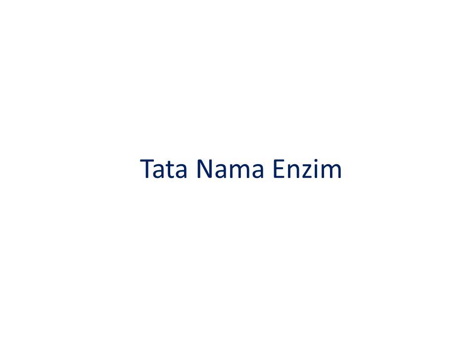Tata Nama Enzim