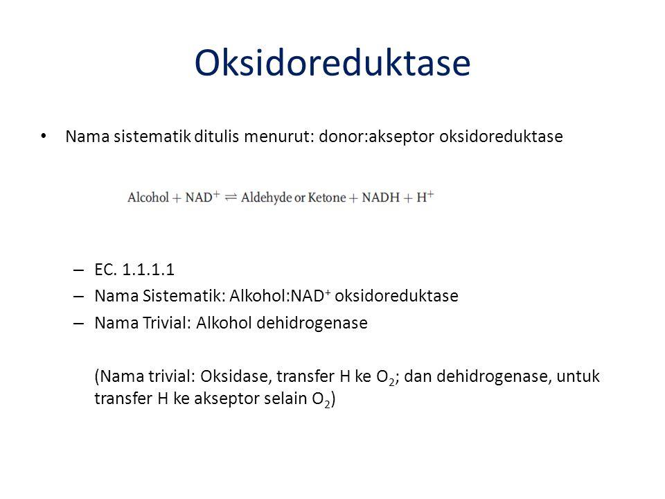 Oksidoreduktase Nama sistematik ditulis menurut: donor:akseptor oksidoreduktase – EC. 1.1.1.1 – Nama Sistematik: Alkohol:NAD + oksidoreduktase – Nama