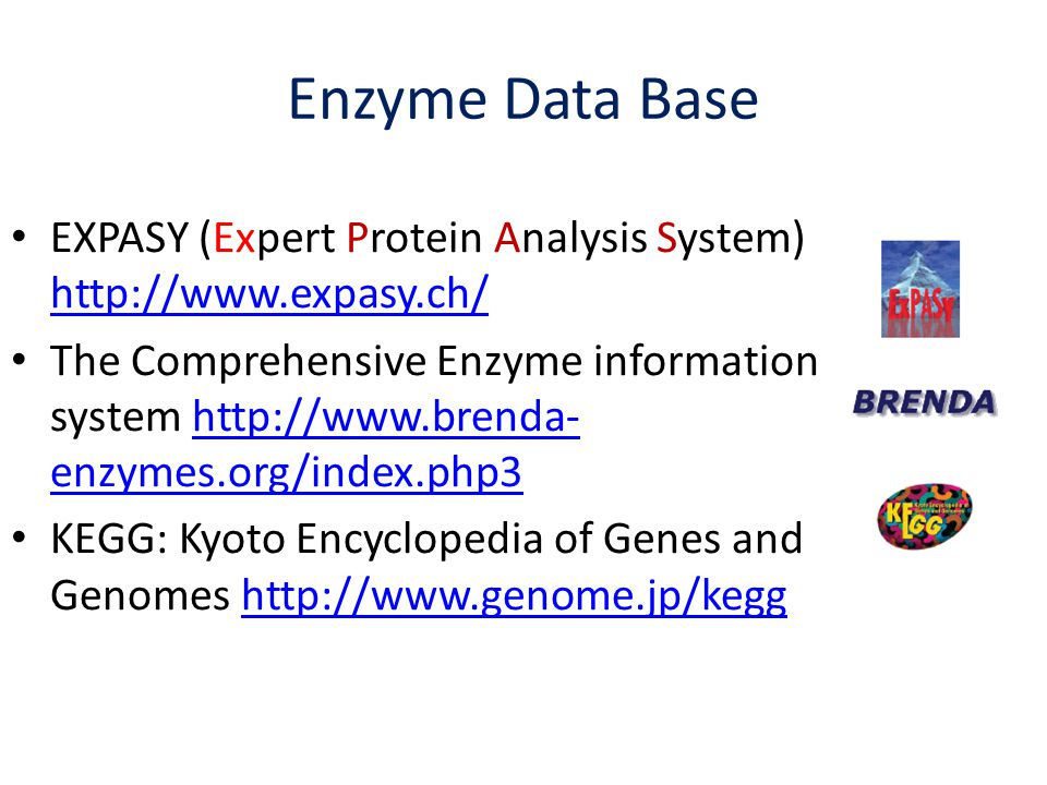 Enzyme Data Base EXPASY (Expert Protein Analysis System) http://www.expasy.ch/ http://www.expasy.ch/ The Comprehensive Enzyme information system http: