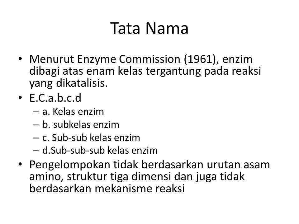 Tata Nama Menurut Enzyme Commission (1961), enzim dibagi atas enam kelas tergantung pada reaksi yang dikatalisis. E.C.a.b.c.d – a. Kelas enzim – b. su