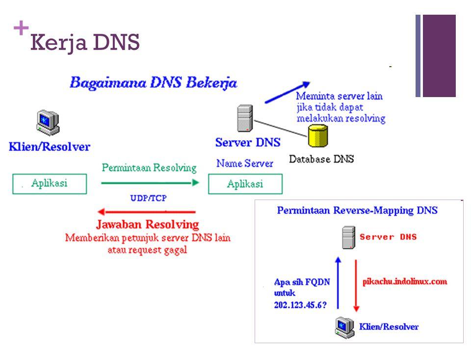 + Kerja DNS