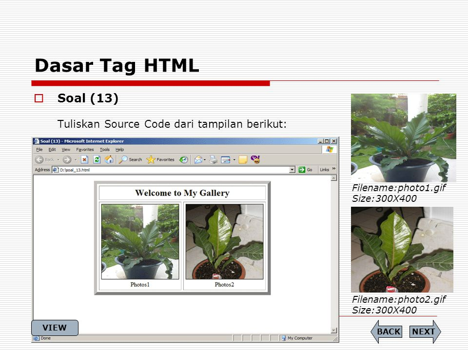 Dasar Tag HTML  Soal (13) Tuliskan Source Code dari tampilan berikut: Filename:photo1.gif Size:300X400 Filename:photo2.gif Size:300X400 NEXTBACK VIEW