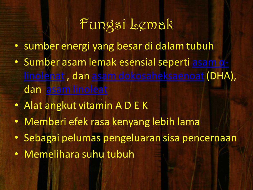Fungsi Lemak sumber energi yang besar di dalam tubuh Sumber asam lemak esensial seperti asam α- linolenat, dan asam dokosaheksaenoat (DHA), dan asam l