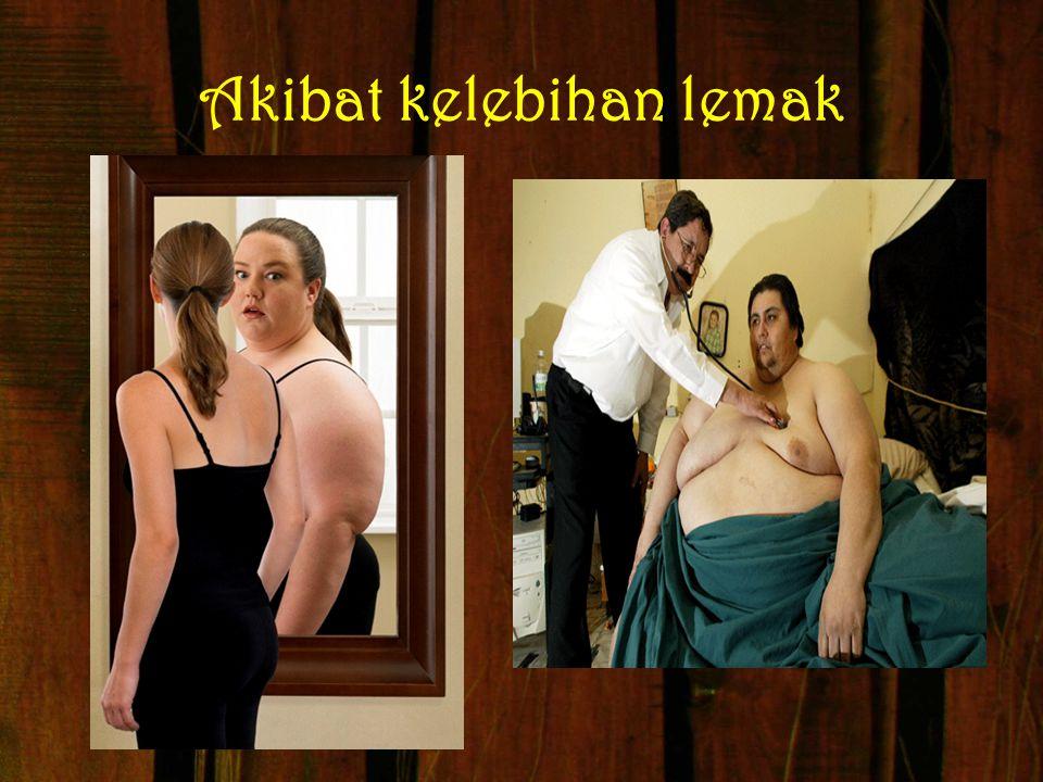 Akibat kelebihan lemak