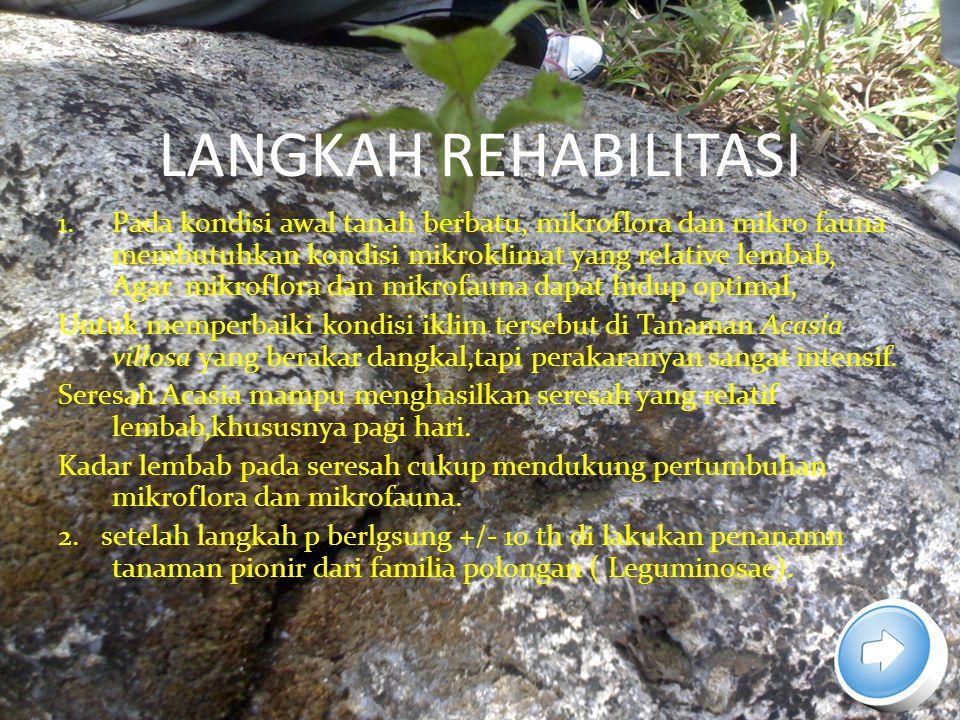 LANGKAH REHABILITASI 1.Pada kondisi awal tanah berbatu, mikroflora dan mikro fauna membutuhkan kondisi mikroklimat yang relative lembab, Agar mikroflo