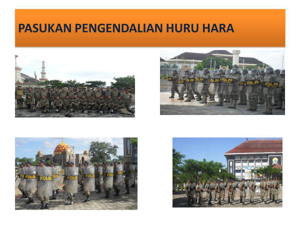 SATUAN POLISI PAMONG PRAJA KOTA SERANG Alamat : Jalan Jendral Sudirman.
