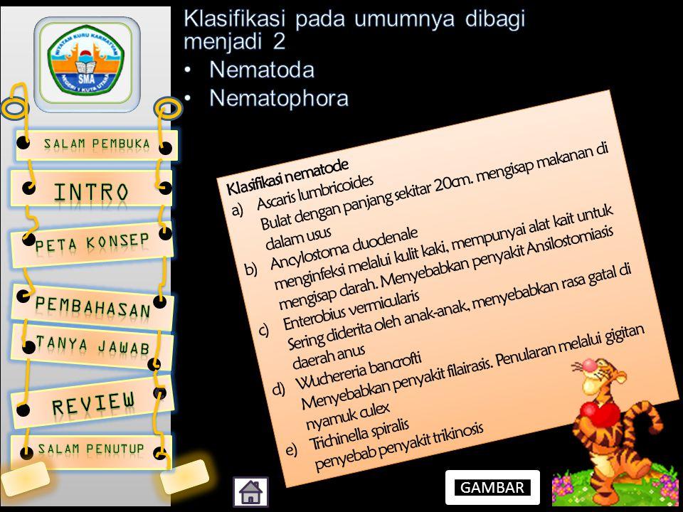 Klasifikasi nematode a)Ascaris lumbricoides Bulat dengan panjang sekitar 20cm. mengisap makanan di dalam usus b)Ancylostoma duodenale menginfeksi mela