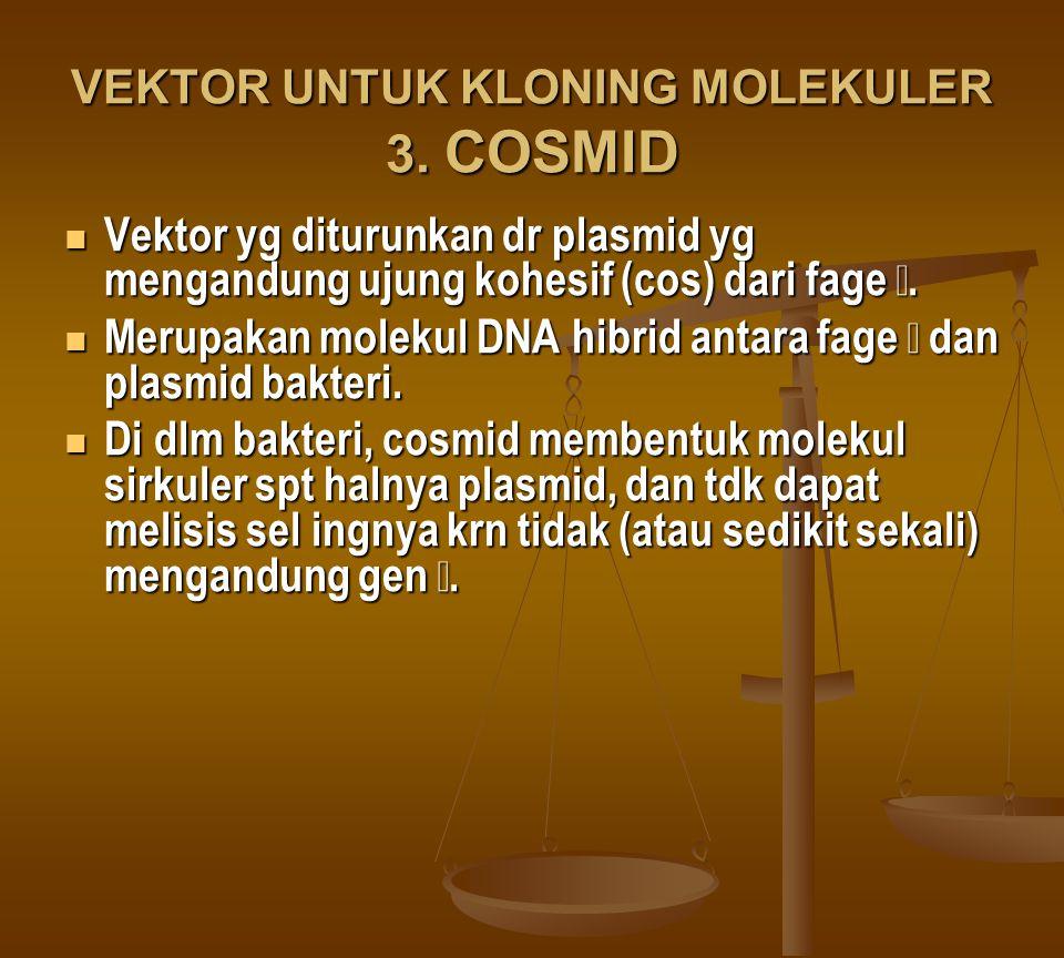 VEKTOR UNTUK KLONING MOLEKULER 3. COSMID Vektor yg diturunkan dr plasmid yg mengandung ujung kohesif (cos) dari fage. Vektor yg diturunkan dr plasmid