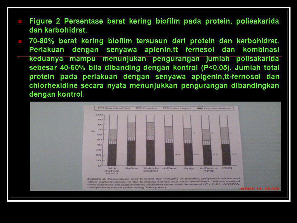 Figure 2 Persentase berat kering biofilm pada protein, polisakarida dan karbohidrat. 70-80% berat kering biofilm tersusun dari protein dan karbohidrat