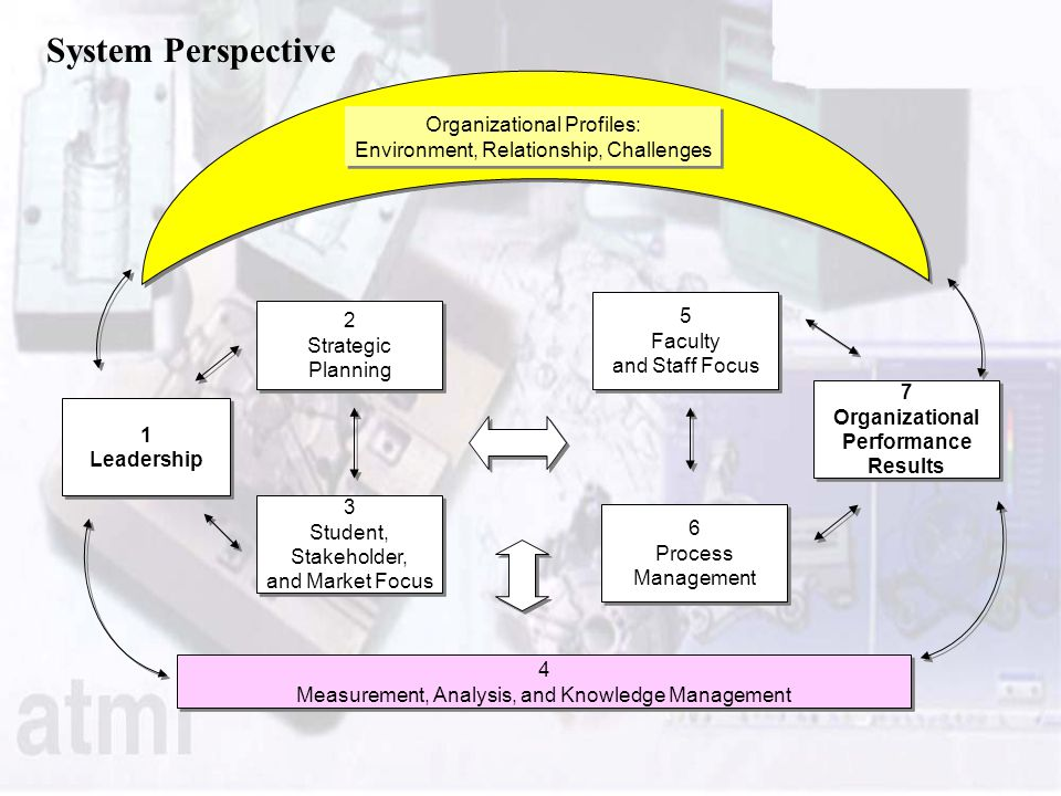 System Perspective 1 Leadership 1 Leadership 2 Strategic Planning 2 Strategic Planning 3 Student, Stakeholder, and Market Focus 3 Student, Stakeholder