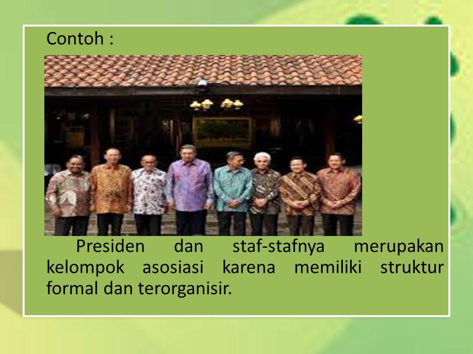 Contoh : Presiden dan staf-stafnya merupakan kelompok asosiasi karena memiliki struktur formal dan terorganisir.