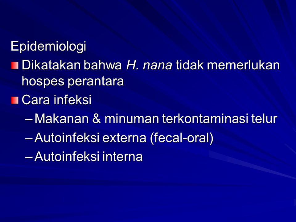 Epidemiologi Dikatakan bahwa H. nana tidak memerlukan hospes perantara Cara infeksi –Makanan & minuman terkontaminasi telur –Autoinfeksi externa (feca