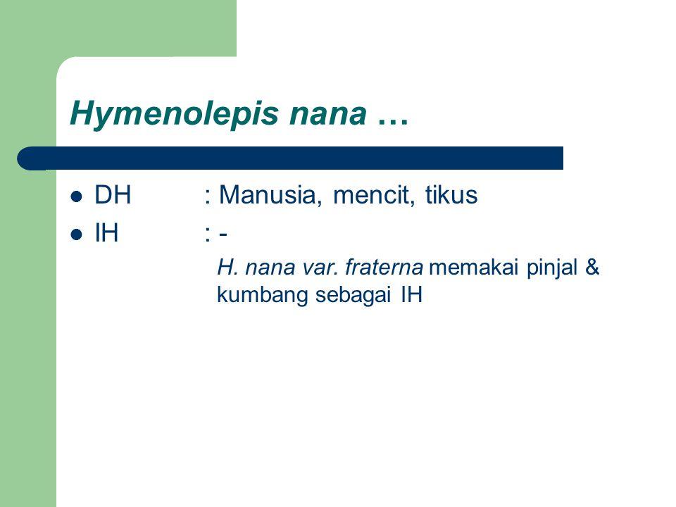 Hymenolepis nana … DH: Manusia, mencit, tikus IH: - H. nana var. fraterna memakai pinjal & kumbang sebagai IH