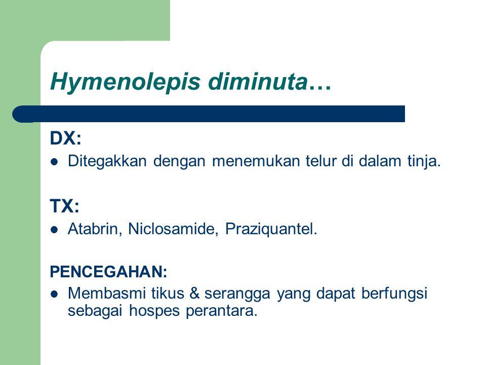 Hymenolepis diminuta… DX: Ditegakkan dengan menemukan telur di dalam tinja. TX: Atabrin, Niclosamide, Praziquantel. PENCEGAHAN: Membasmi tikus & seran