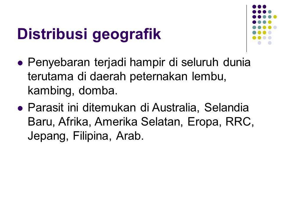 Distribusi geografik Penyebaran terjadi hampir di seluruh dunia terutama di daerah peternakan lembu, kambing, domba. Parasit ini ditemukan di Australi