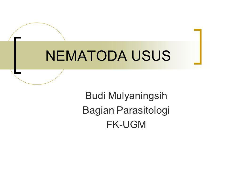 NEMATODA USUS Budi Mulyaningsih Bagian Parasitologi FK-UGM