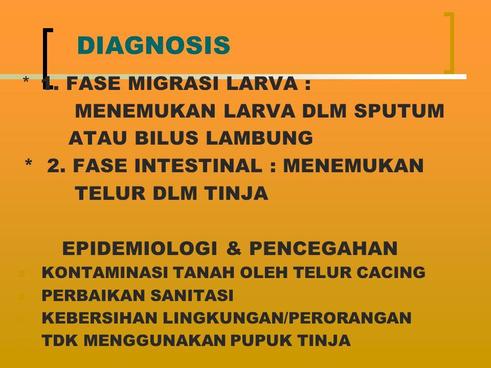 DIAGNOSIS * 1. FASE MIGRASI LARVA : MENEMUKAN LARVA DLM SPUTUM ATAU BILUS LAMBUNG * 2. FASE INTESTINAL : MENEMUKAN TELUR DLM TINJA EPIDEMIOLOGI & PENC
