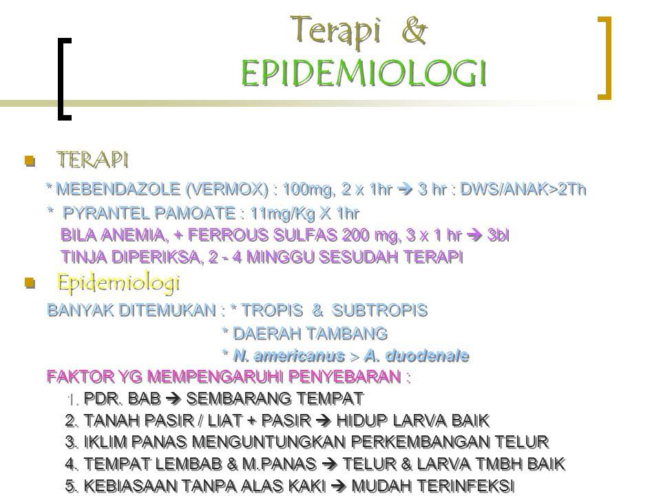 Terapi & EPIDEMIOLOGI TERAPI * MEBENDAZOLE (VERMOX) : 100mg, 2 x 1hr  3 hr : DWS/ANAK>2Th * PYRANTEL PAMOATE : 11mg/Kg X 1hr BILA ANEMIA, + FERROUS S