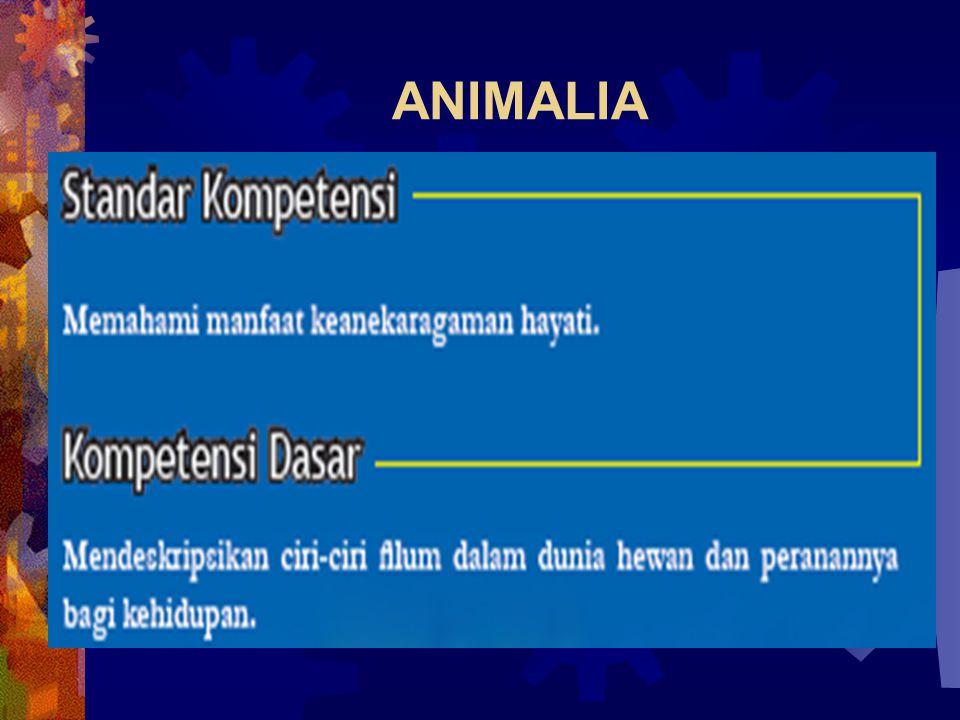 Contoh Porifera 1. Demosponiae 2. Spone