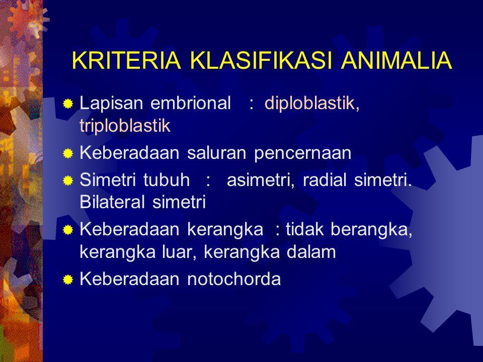 KRITERIA KLASIFIKASI ANIMALIA  Lapisan embrional : diploblastik, triploblastik  Keberadaan saluran pencernaan  Simetri tubuh : asimetri, radial sim
