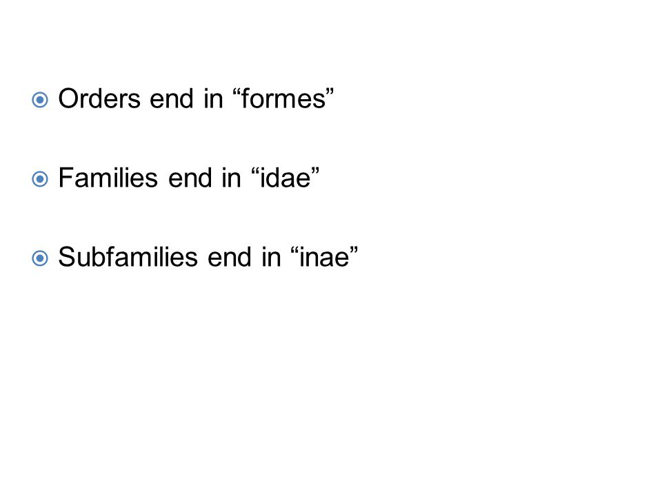 " Orders end in ""formes""  Families end in ""idae""  Subfamilies end in ""inae"""