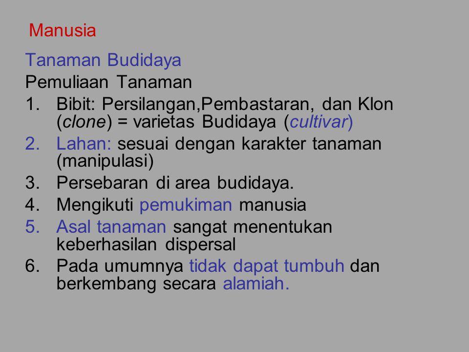 Manusia Tanaman Budidaya Pemuliaan Tanaman 1.Bibit: Persilangan,Pembastaran, dan Klon (clone) = varietas Budidaya (cultivar) 2.Lahan: sesuai dengan ka