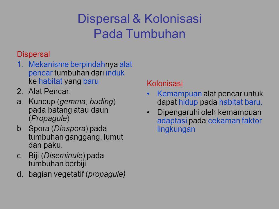 Dispersal Aktif Kemampuan tumbuhan untuk menggunakan organ tubuhnya untuk berpindah 1.Rimpang (Rhizome; Zingiberaceae, Cannaceae, Musaceae, Bambusoidae, Maranthaceae) = Geophyte 2.Umbi batang (Tuber; Ipomoea, Dahlia, Cyperus, Coleus, dll.) = Geophyte 3.Geragih (Stolon; Fragaria, Cyperus, Imperata, dll.) 4.Kuncup ujung daun (The walking fern) 5.Kuncup akar (Anomali; Artocarpus) 6.Siklus hidup pendek (reproductive type)