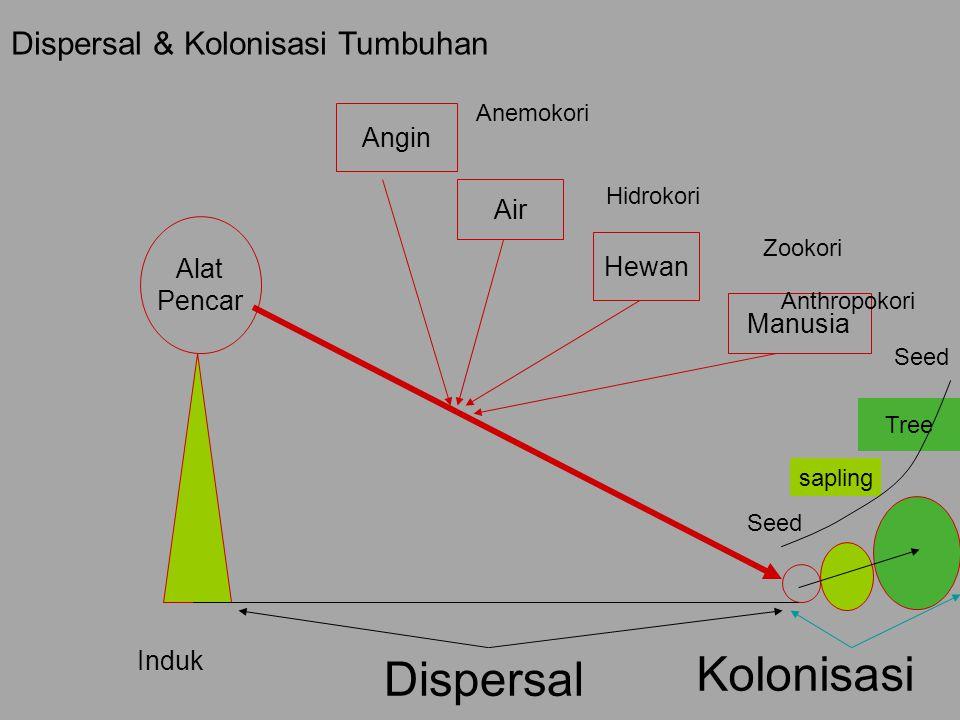 Alat Pencar Angin Air Hewan Induk Dispersal Kolonisasi Seed sapling Tree Dispersal & Kolonisasi Tumbuhan Seed Manusia Anemokori Hidrokori Zookori Anth