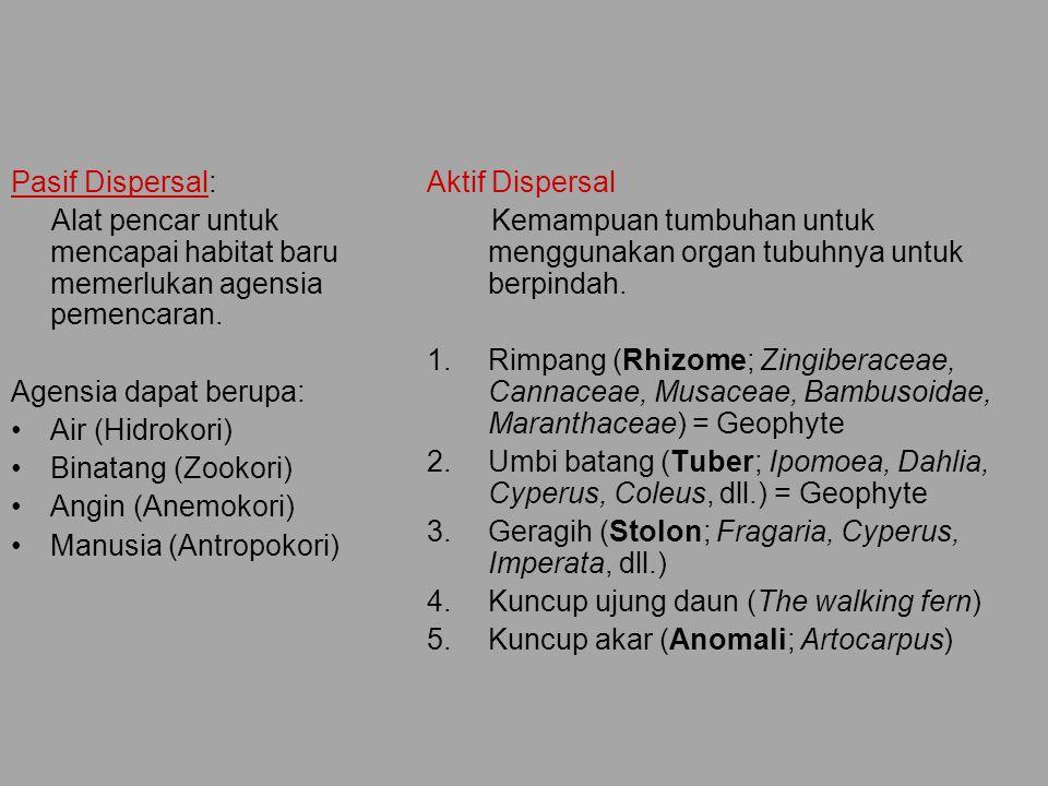 Karakteristik Dispersal Aktif dan Pasif Pasif 1.Biji, Spora, Alat Vegetatif 2.Alat pencar dinding berornamentasi .