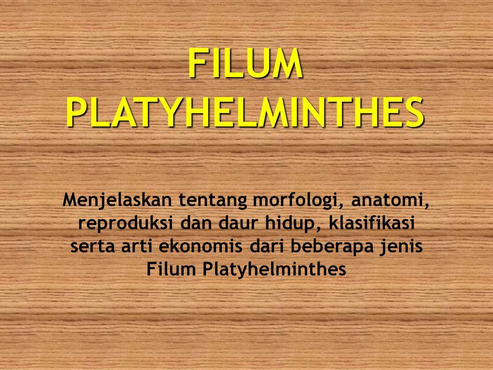 FILUM PLATYHELMINTHES Menjelaskan tentang morfologi, anatomi, reproduksi dan daur hidup, klasifikasi serta arti ekonomis dari beberapa jenis Filum Pla